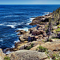 Rocky Coastline 1 by John Trommer