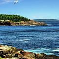 Rocky Coastline 3 by John Trommer