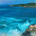 Rocky Cove by Sally Seago