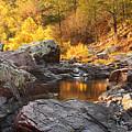 Rocky Creek II On Mill Mountain In The Missouri Ozarks by Greg Matchick