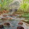 Rocky Creek In The Catskills  by Ellen Levinson