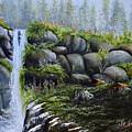 Rocky Falls by Martin Schmidt