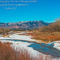 Rocky Mountain by Alex Zabo