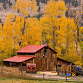 Rocky Mountain Barn Autumn View by James BO Insogna