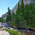 Rocky Mountain Chipmunk Paradise by James BO Insogna