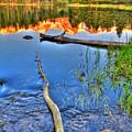 Rocky Mountain Lake by Scott Mahon