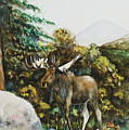 Rocky Mountain Moose by Laurie Tietjen