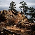 Rocky Mountain Morning by Robert J Caputo