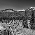 Rocky Mountain National Park Black And White by Judy Vincent