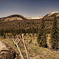 Rocky Mountain National Park Vintage by Judy Vincent
