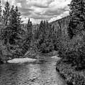 Rocky Mountain River by John McGraw