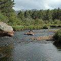 Rocky Mountain Stream by Kathy Schumann