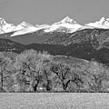 Rocky Mountain View Bw by James BO  Insogna