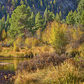 Rocky Mountains Autumn by Arizona Annie
