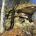 Rocky Outcrop by David T Wilkinson