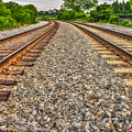 Rocky Railroad Rails by Reid Callaway