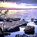 Rocky River Shore by Michael Frizzell