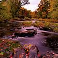 Rocky Run Creek by Neal Nealis