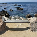 Rocky Seaside Bench by Carol Groenen