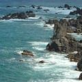 Rocky Shore On St. Kitts by Patty Vicknair
