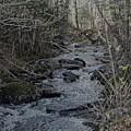 Rocky Stream by Kevin Humphrey