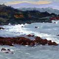 Rocky Surf by Linda Hiller