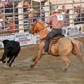 Rodeo 330 by Joyce StJames