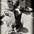 Rodeo Boots And Spurs by Gus McCrea