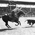 Rodeo Calf Roping Contest by Underwood Archives
