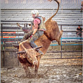 Rodeo Cowboy by LeeAnn McLaneGoetz McLaneGoetzStudioLLCcom