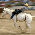 Rodeo by Jerry McElroy