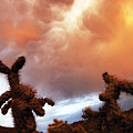 Roiling Sky by Jill Reger