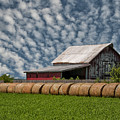 Rolled Up - Hay Rolls And Barn by Mitch Spence
