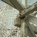 Roller Coaster 2 by Sara Stevenson
