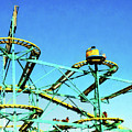 Roller Coaster by Susan Savad