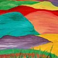 Rolling Hills by Anza Arain