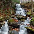 Rollo Fall - Randolph, New Hampshire by Erin Paul Donovan