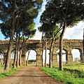 Roman Aqueducts by Laurie Morgan
