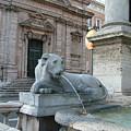 Roman Lion by Mindy Newman