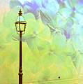 Romantic Dreams by Susanne Van Hulst