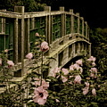 Romantic Garden And Bridge by Mitch Spence