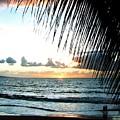 Romantic Sunset by Will Borden