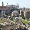 Rome The Old New World by Mark Papa