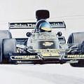 Ronnie Peterson - Lotus 76 by Lorenzo Benetton