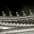 Roof National Palace Museum Taiwan City - Taipei  by Christine Till