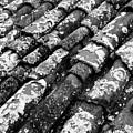 Roof Tiles by Gaspar Avila