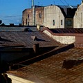 Rooftops From The Sauna by Robert D McBain
