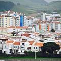 Rooftops Of Ponta Delgada by David Coleman