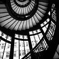 Rookery Stairwell by Rita Anthony