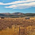 Room To Roam - Colorado by Kristia Adams